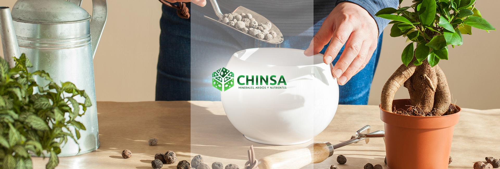 chinsa-banner-2