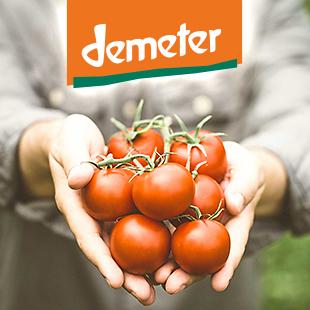 Fundación Demeter